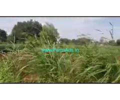 10 Gunta Farm Land For Sale In Mysuru