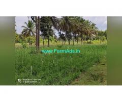 3.5 Acre Farm Land for Sale Near Mysore