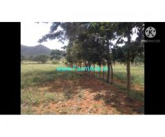 4 Acre Farm Land for Sale Near Mysore