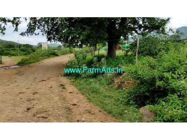 2 Acre Farm Land for Sale Near Mysore