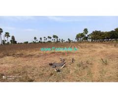 Half  Acre agriculture land for sale in Phailwanpur village