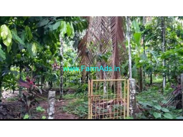 37 cents DC converted Farm land for Sale near Paladka