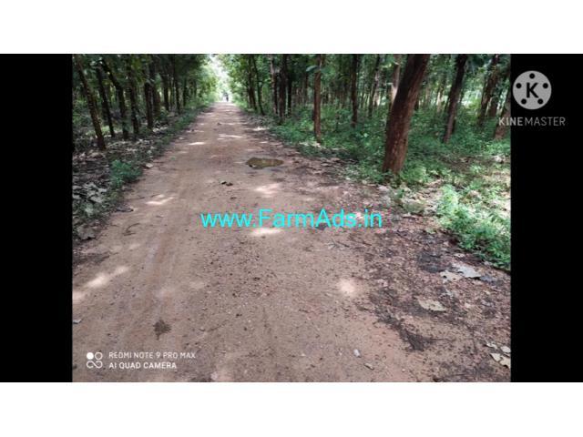 5.5 Acre Farm Land for Sale Near Mysore