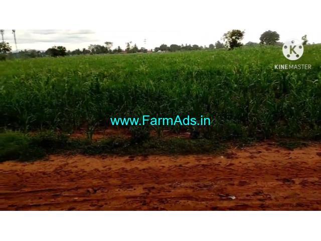 4.5 Acre Farm Land for Sale Near Malavalli towards Talakadu