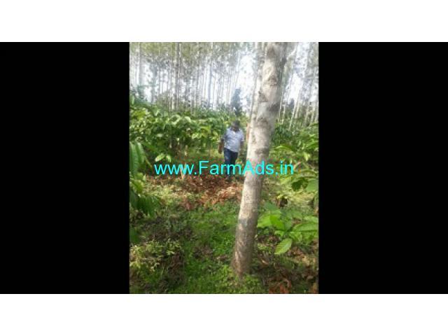 5.27 Acres Farm Land For Sale In Chikmagalur