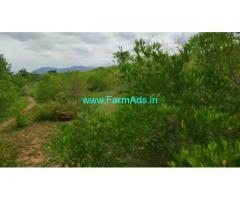 4.5 Acre Farm Land for Sale Near Mysore