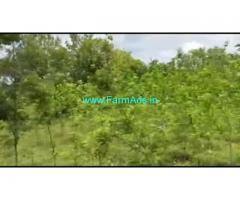2 Acres 30 Gunta Agriculture Land For Sale In Mysuru ringroad