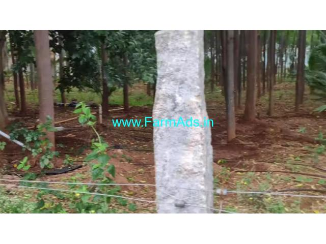 3.15 Acre Farm Land for Sale Near Mysore