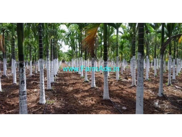 60 acre Areca farm for sale in Udupi