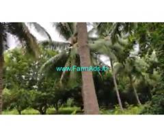 3 Acres Agriculture Land For Sale In Sembulipuram
