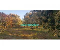 10 Acre Mango garden with shed for Sale Chintamani Madanapalli Road