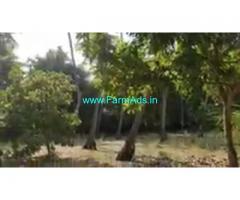 44 Cent Farm Land For Sale In Sembulipuram