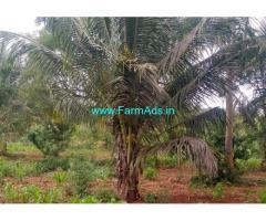 12 Acre Farm Land for Sale in Bogadi Gaddige Route