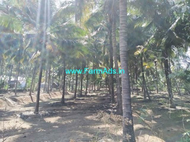 2 Acre Coconut farm land for Sale near Samathur