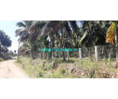 20 Acres Coconut Farm Sale At Aanamalai
