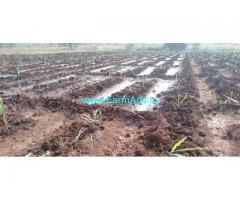 10 Acre Agriculture land for Sale near Bidar