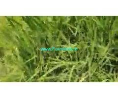 70 Cent Farm Land For Sale In Kadapakkam