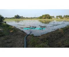 6 Acres Coconut Agriculture Land for Sale in Needamangalam