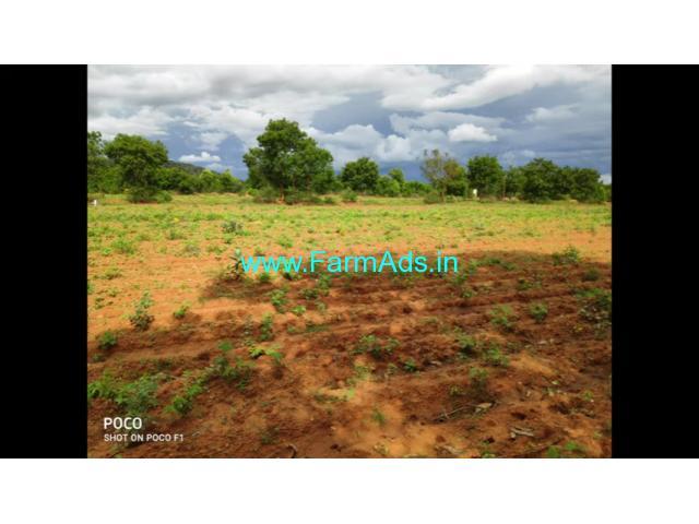 3.75 Acre Farm Land for Sale Near Mysore