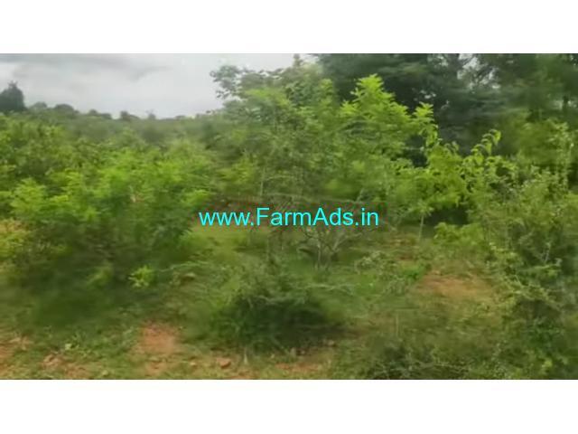 2 Acre Farm Land for Sale Near Hanur
