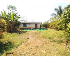 10 Acres Coconut farm for Sale near Tumkur