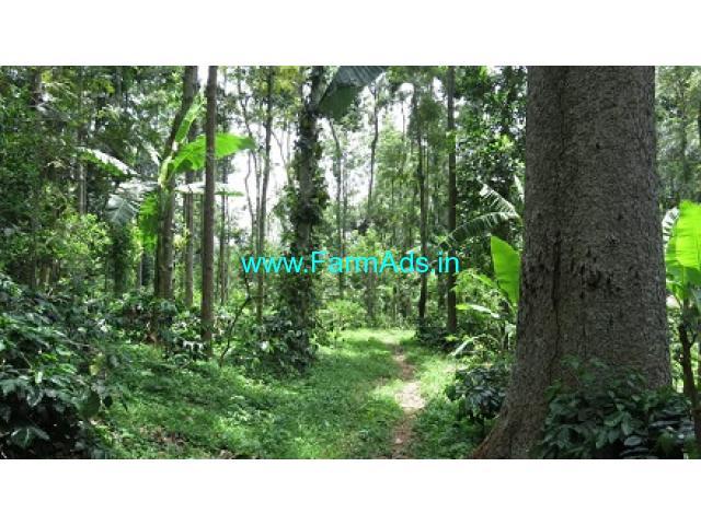 130 Acres Coffee estate sale in Kodaikanal