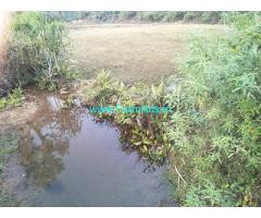 20 guntas Land sale for Sale in Mudigere