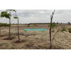 2 Acres Farm Land For Sale In Marakkanam