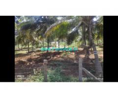 3 Acre Farm Land for Sale Near Kanakapura