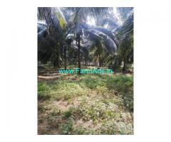 60 Acre Coconut Farm land in Anaimalai