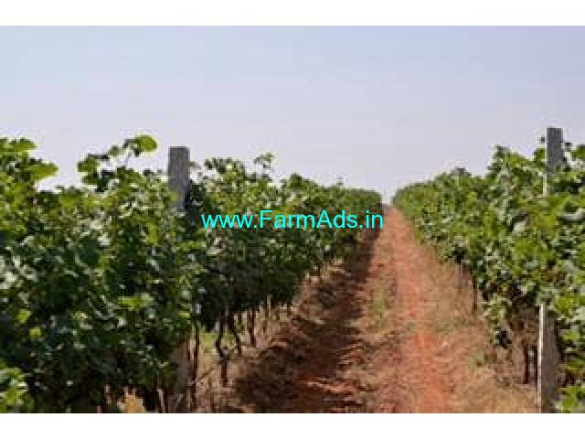 Wine Factory for Sale in Karnataka