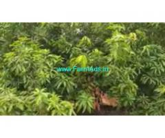 85 Cent Agriculture Land For Sale In Nallur