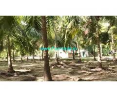 2 Acres Farm Land For Sale In Vembanur