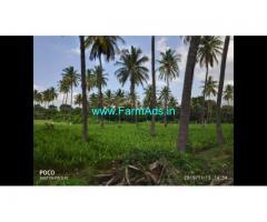 7.15 Acre Farm Land for Sale Near Mysore