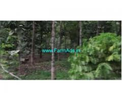 50.5 Cents Farm Land For Sale In Kuttichira