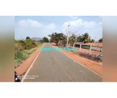 12 Acre Farm Land for Sale Near Mysore