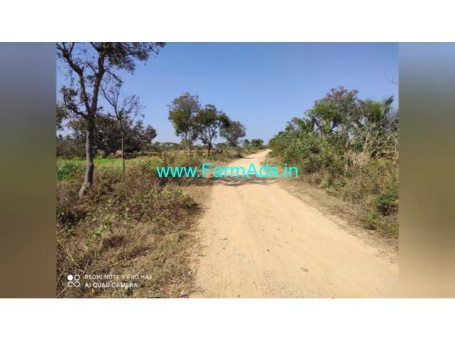 6 Acre Farm Land for Sale Near Malavalli