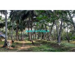 28 Acres Coconuts farm with bungalow for Sale at Govindapuram