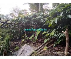 1 Acre coffee estate with house for sale in Balehonnur