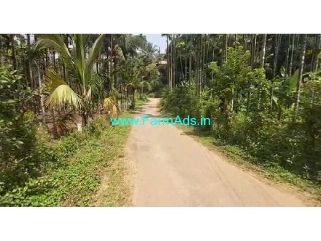1.30 Acres Beautiful Paakku Thoppu Sale at Agali