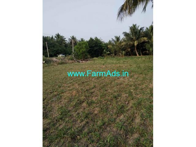 35 cent Farm Land for Sale near Pollachi