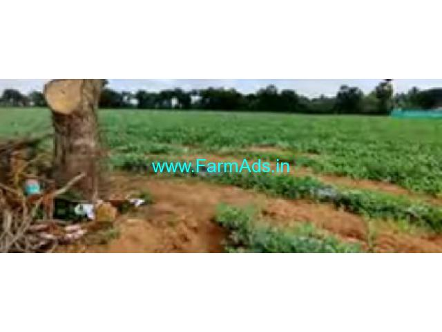 3.50 Acre Agriculture Land Sale In Kuvathur