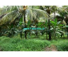 10.45 Acres Coconut Farm Sale At Aanamalai