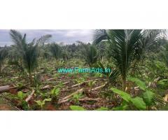 10.45 Acres Coconut Farm Sale At Aanamalai