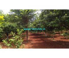 Farm Land for sale 12 Acres at Bhongir