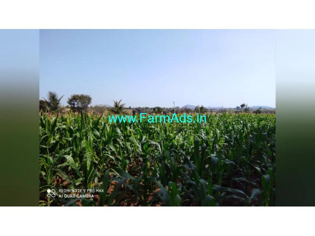 4.20 Acre Farm Land for Sale Near Chamarajanagar