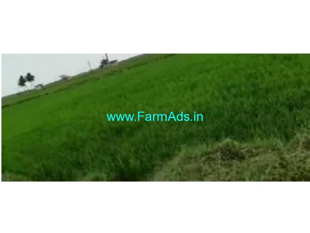 80 Cent Agricultur Land Sale In Poondi
