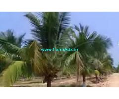21.5 Acres Farm House Sale In Udumalaipettai