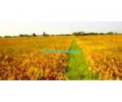21 Acres Agriculture Land sale In Perambur