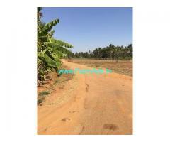 33 guntas farm land for sale in Doddabelavangala hobli